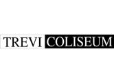 TREVI COLISEUM SRL