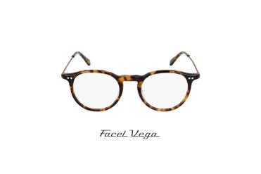 Facel Vega 9116 Écaille